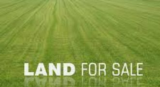 80 Acres of Land For Sale At Monastery Road In Sangotedo Ajah-Lekki
